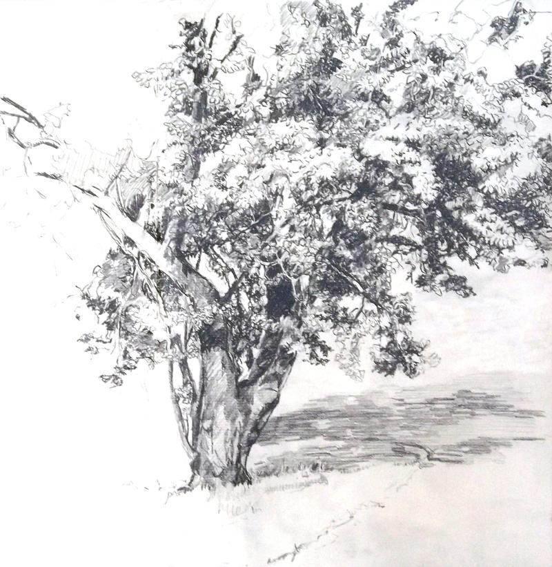 Baum-Atelier